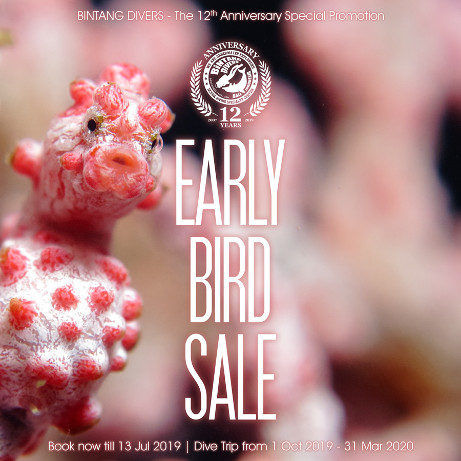 The 12th Anniversary Special Promotion - Early Bird Sale